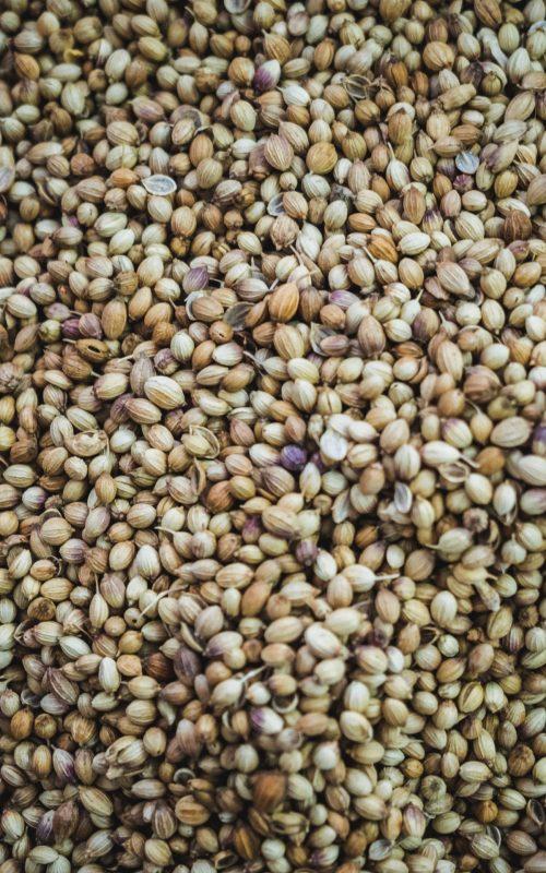 Oil, Seeds & Feed